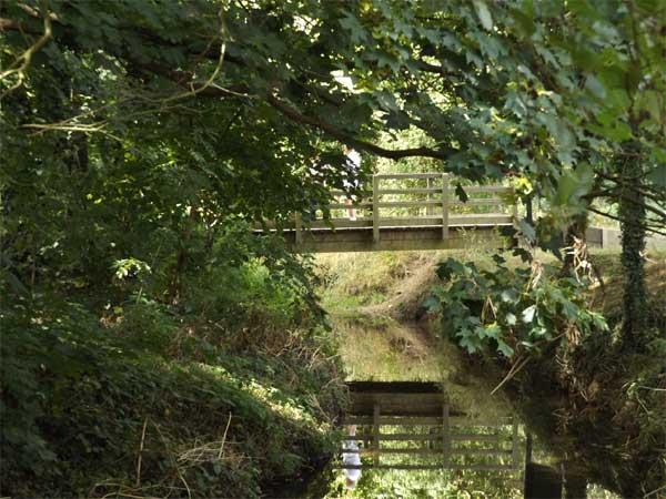 pinn bridge-lg-sep-16.jpg